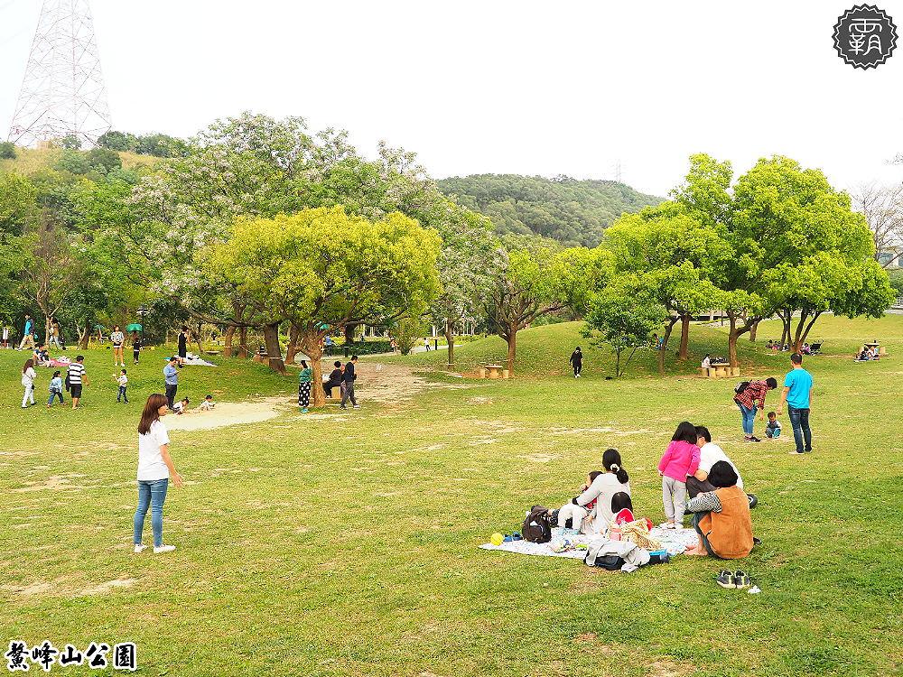 20180402223317 95 - 鰲峰玉帶,清水景觀橋賞苦楝花,旁邊還有大草皮可以野餐~