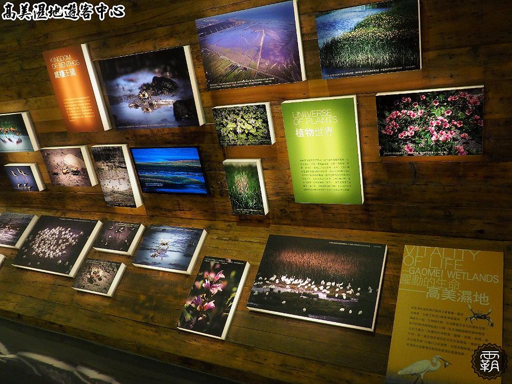 20180802120339 33 - 高美濕地遊客中心,外有招潮蟹裝飾藝術,內有互動體驗適合親子出遊!