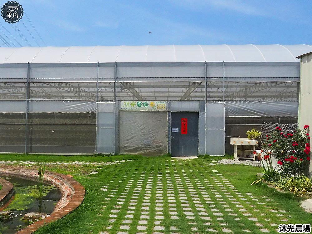 20190405214124 7 - 白草莓、水蜜桃草莓好特別!沐光農場,溫室高架草莓園,採草莓超舒適!