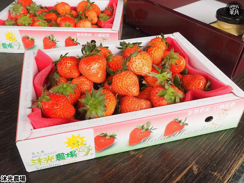 20190405215339 75 - 白草莓、水蜜桃草莓好特別!沐光農場,溫室高架草莓園,採草莓超舒適!