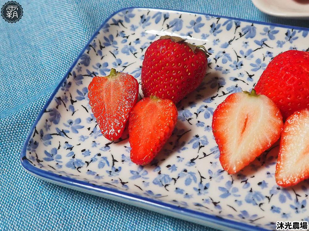 20190405215344 5 - 白草莓、水蜜桃草莓好特別!沐光農場,溫室高架草莓園,採草莓超舒適!