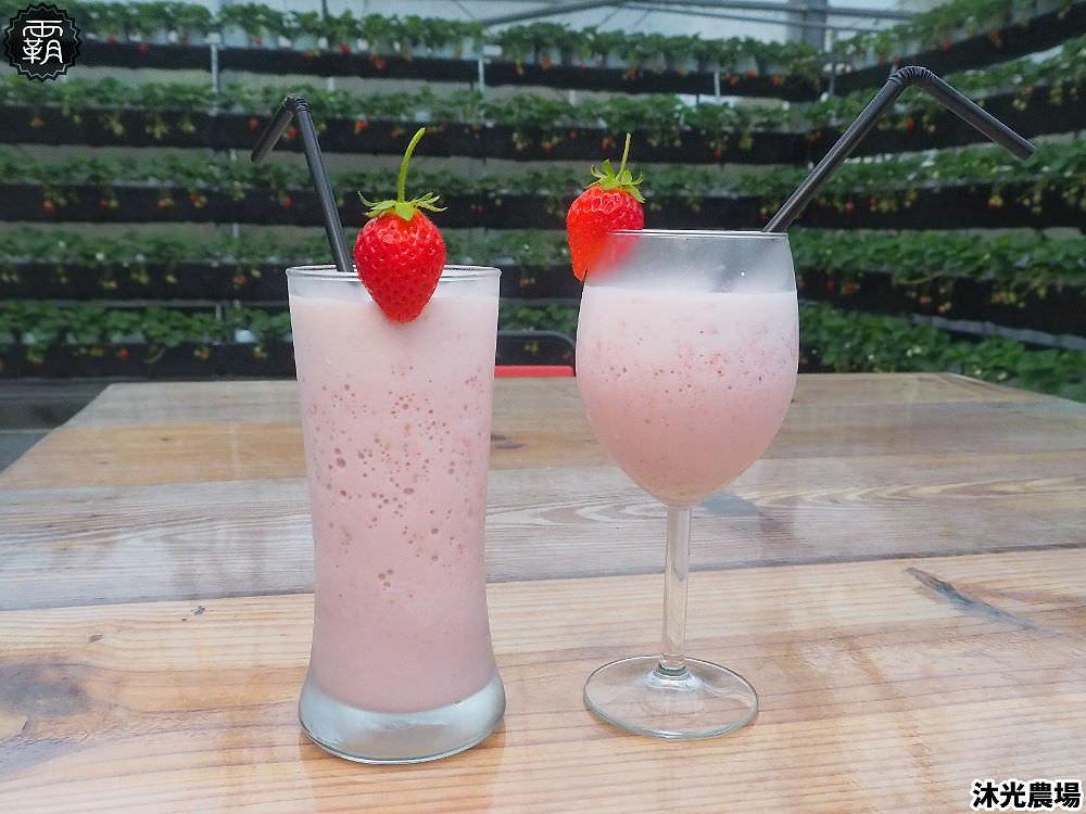 20190405215408 64 - 白草莓、水蜜桃草莓好特別!沐光農場,溫室高架草莓園,採草莓超舒適!